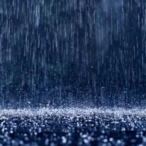 Дождь прогнал Уильямс и Бондаренко с корта, а Савчук повезло благодаря чужой неприятности