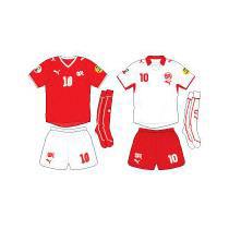 Евро-2008: Команда Швейцарии – «За себя и за того парня»