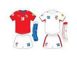 Евро-2008: команда Чехии – повторится ли былой успех?
