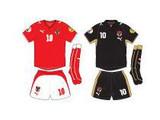 Евро-2008: команда Австрии – хозяин-мальчик для битья
