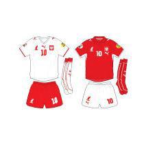 Евро-2008: команда Польши – в первый раз