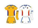 Евро-2008: команда Румынии – наглецы считают «группу смерти» легкой
