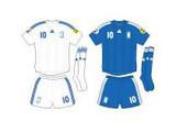 Евро-2008: команда Греции – второй раз в ту же реку?