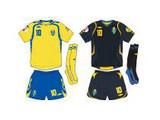 Евро-2008: команда Швеции – всегда и везде