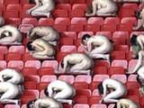 На стадионе «Металлист» будет допускаться голый вид. Некоторое время