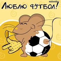 ЧМ-2010. Анонс заключительных матчей группового турнира