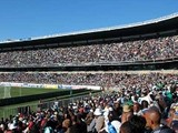 В ЮАР подсчитали сумму, заработанную на Чемпионате Мира по футболу