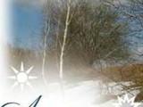 Пятерка памятных событий для харьковского спорта. Апрель 2011