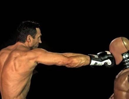 Удар Кличко сравним с ударом быка