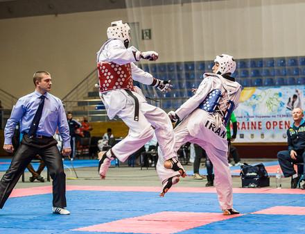 В Харькове прошел международный турнир по тхэквондо
