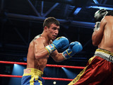 Витьека отказался боксировать против Ломаченка
