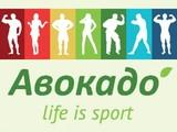 Авокадо (на Студенческой), спортивный клуб
