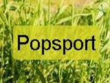 Popsport, магазин
