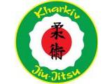 Ассоциация джиу-джитсу Украины, общественная организация