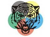 Tiger, клуб каратэ