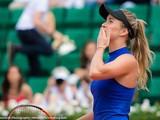 Харьковская теннисистка вернулась в ТОП-5 мирового рейтинга