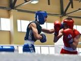 Харьковские боксеры завоевали пять золотых медалей на чемпионате Украины (ФОТО)