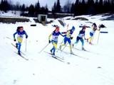 Юные лыжники успешно выступили на Львовщине